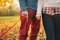 Close up on two hands of couple holding dogs lead outside Stock Photos