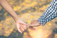 Close up of two Lovers Joining Hands. Detail Silhouette of Man and Woman holding hands over the Yellow flowers fall to the ground. royalty free stock photo
