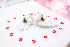 Close up of two nice towels swans Stock Images