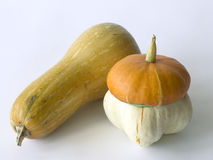 Close-up of two pumpkins Royalty Free Stock Photos