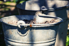 Close up of two rusty iron buckets in grass in the garden. Dirty gray metallic bucket with garbage on barnyard at sunny day Royalty Free Stock Image