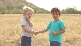 Two funny little boys shake hands in the Park. Close-up of two small boys playing in a dry field at sunset in rural areas. Two funny little boys shaking hands stock video