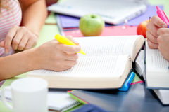 Close-up of two students studying together Royalty Free Stock Photos