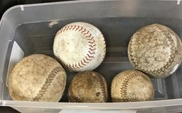 A close up of two used baseballs and three used softballs in a plastic bin stock photography