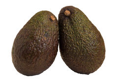 Close-up of two whole avocados Stock Images
