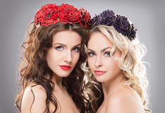 Close-up of two women wearing flower wreathes. Close-up of two absolutely gorgeous and glamorous women wearing flower wreathes over grey background Stock Image