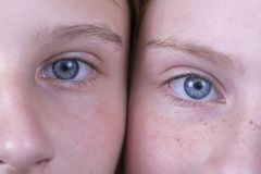 Close up two young girl eyes, they are looking at the camera, couple portrait children, macro. Indoors stock image