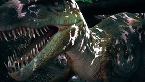 Close up of Tyrannosaurus Rex dinosaur in a wild forest,, slow motion. Hd video stock video
