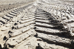 Close up of tyre tracks in the mud. Stock Photography