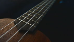 Close up ukulele guitar. stock video