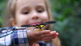 Close-up Uma borboleta vibra suas asas na mão de uma menina 4K mo lento filme