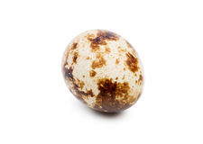 Close-up of an uncooked quail egg, isolated on a white background. Organic and natural product. Healthy food concept. Stock Photos