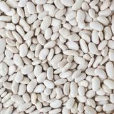 Uncooked white beans background Royalty Free Stock Images