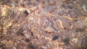 Close-up, under the clear water of the sea, off the coast, on the beach, you can see the sand and many small shells and. Pebbles stock footage