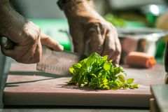 Close up of unrecognizable cook cutting onions and other vegetables with chef knife while working stock images
