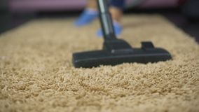 Close-up of vacuum cleaner sweeping dust from expensive rug, household hygiene. Stock footage stock video footage