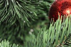 Close-up van één rood ornament stock foto