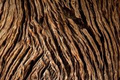 Close-up van Achtergrond van de de Oude en de Houten Textuuroppervlakte van Grunge Stock Afbeelding