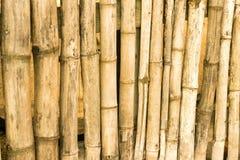 Close-up van bamboevoorraden die een omheining maken stock foto