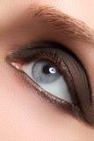 Close-up van blauw vrouwenoog met mooie rokerige samenstelling Schoonheidsmiddelen & make-up stock afbeelding