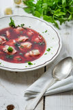 Close-up van borscht met verse ingrediënten wordt gemaakt dat Royalty-vrije Stock Afbeelding