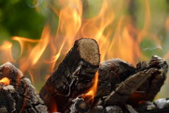 Close-up van brand het branden stukken van hout op een groene achtergrond Stock Fotografie
