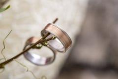 Close-up van bruid en bruidegomtrouwringen die van een takje hangen stock afbeelding