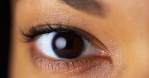 Close-up van bruine ogen Stock Foto's