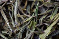 Close-up van Chinese thee Royalty-vrije Stock Afbeeldingen