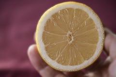 Close-up van citroenplak ter beschikking Stock Fotografie