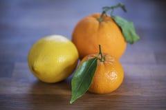 Close-up van citrusvruchten Stock Afbeeldingen