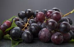 Close-up van cluster van zwarte druiven op donkere achtergrond Royalty-vrije Stock Fotografie