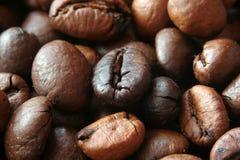 Close-up van coffekorrels Stock Foto