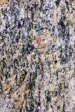 Close-up van Conglomeraat met Veldspaat in Oker Royalty-vrije Stock Afbeeldingen