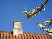 Close-up van dak en schoorsteen tegen de blauwe hemel royalty-vrije stock foto's