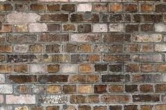 Close-up van de Bakstenen muur Stock Fotografie