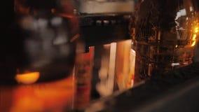 Close-up van de flessen van de zonnebloemolie op de transportband stock footage