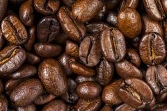 Close-up van de Geroosterde Bonen van de Koffie royalty-vrije stock fotografie