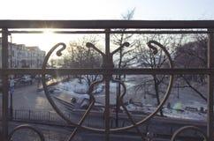 Close-up van de metaal de uitstekende die balustrade in zonsondergang met erachter park wordt geschoten royalty-vrije stock foto's