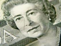 Close-up van de Rekening van Twintig Dollar Stock Afbeelding