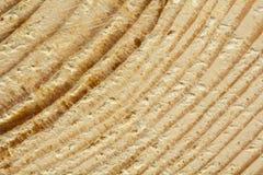 Close-up van de ruwe gezaagde textuur van de pijnboomboom Stock Afbeelding