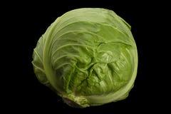 Close-up van de salade de jonge kool Stock Afbeeldingen