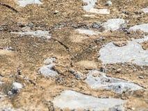 Close-up van de vuile achtergrond van de cementvloer Royalty-vrije Stock Foto's