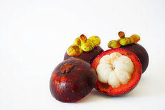 Close-up van drie mangostans op de witte achtergrond Royalty-vrije Stock Foto