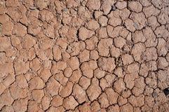 Close-up van droge grondtextuur stock foto's