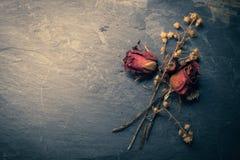 Close-up van Droge Rose Flower op Steen stock afbeeldingen