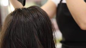 Close-up van droogkap, de salon van de conceptenbesnoeiing, vrouwelijke stilist stock video