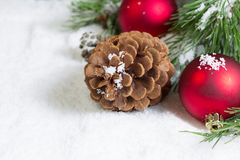 Close-up van een Denneappel op Sneeuw met de Tak en Ornamen van de Pijnboomboom Stock Afbeeldingen