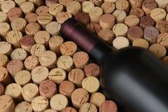 Close-up van een fles Cabernet - Sauvignon-de wijn door gebruikt wordt omringd die kurkt stock foto