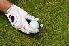 Close-up van een gloved hand van een vrouwengolfspeler die golfbal plaatsen Royalty-vrije Stock Afbeeldingen
